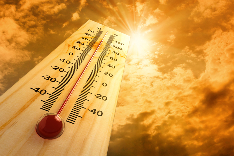Sốc nhiệt thường gặp vào mùa hè nóng bức